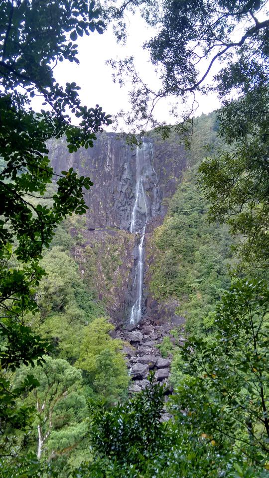 nat-NZ-bop-wairere_falls-1