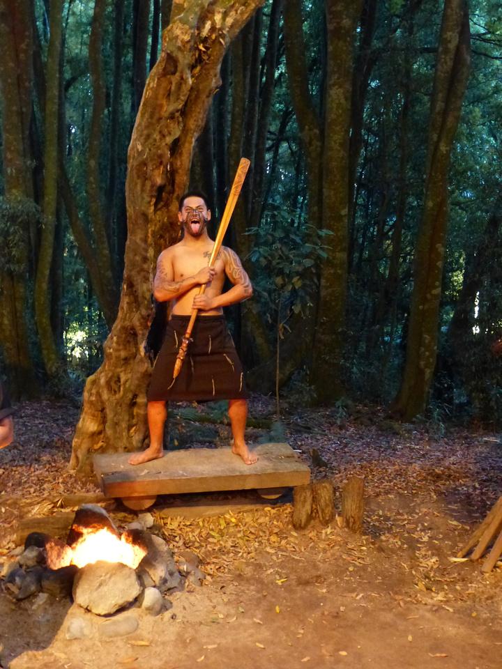 mao-NZ-rotorua-tamaki_village-maori_Warrior-2