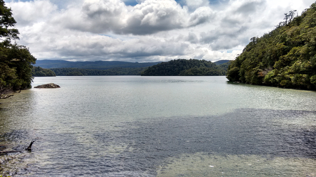 nat-NZ-urewera-lake_waikareiti