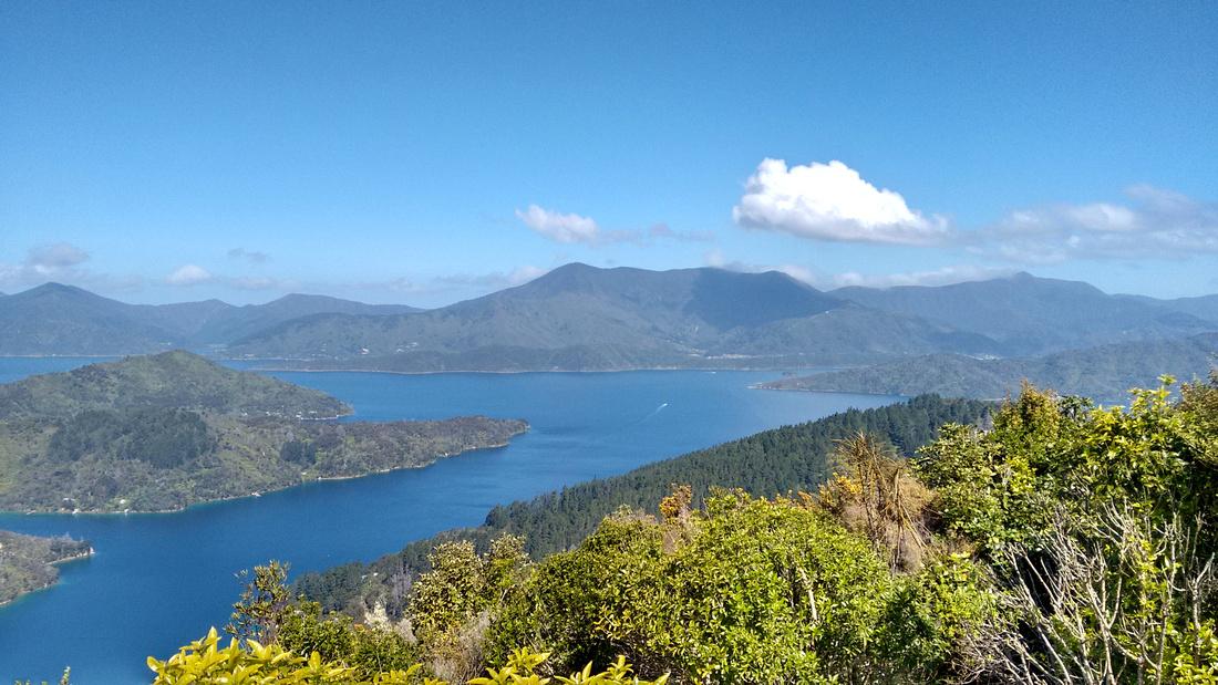 nat-NZ-marlborough-sounds-onahau_point_lookout-2