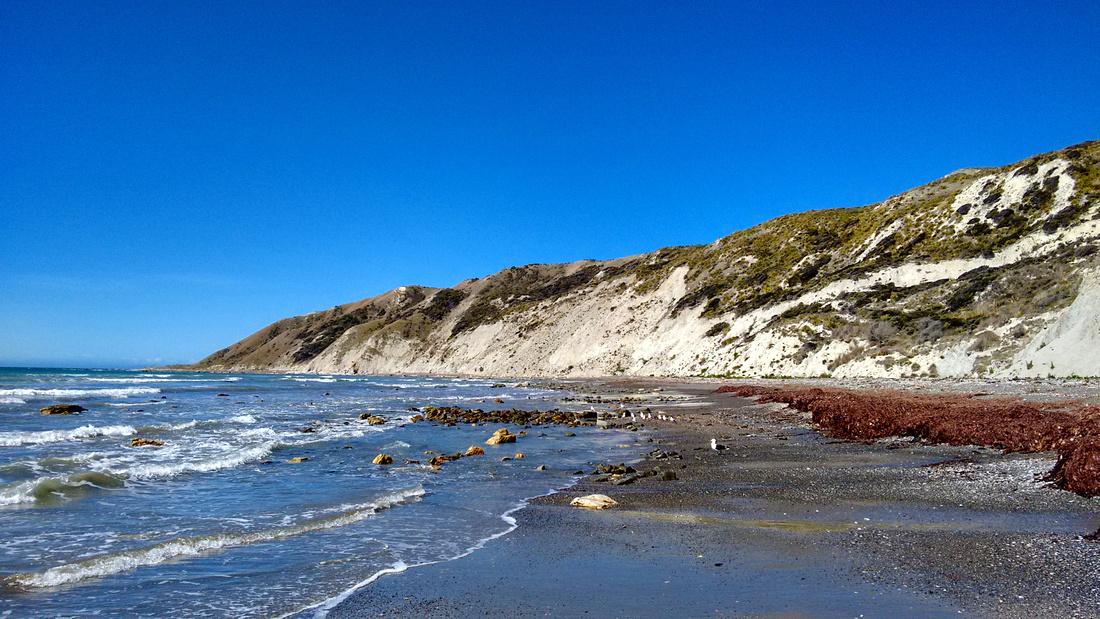 nat-NZ-marlborough-cape_campbell_walk