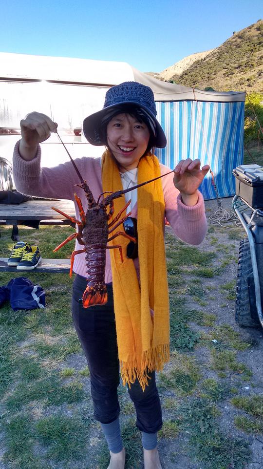 xx-NZ-marlborough-marfells_beach-crayfish