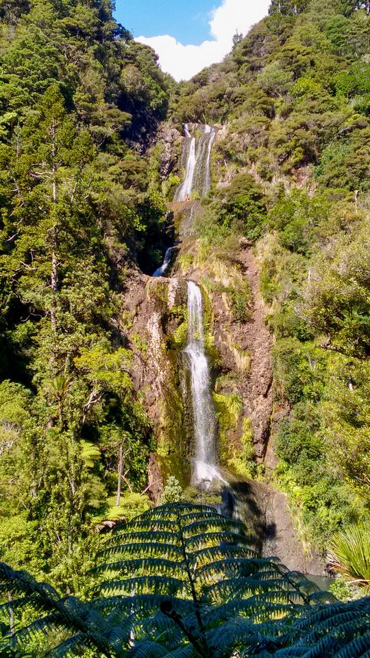 nat-NZ-piha-kitekite_falls