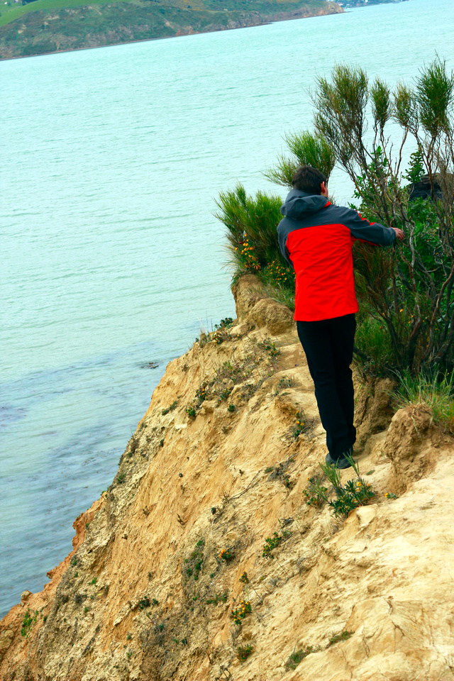 tom-NZ-banks_peninsula-onawe-walk