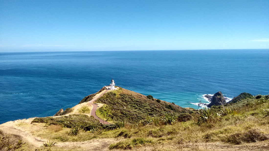 nat-NZ-northland-cape_reinga