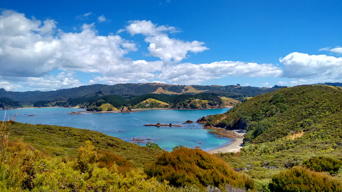 nat-NZ-northland-mahinepua_peninsula_track-view-3