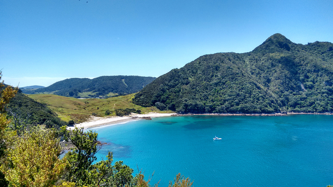 nat-NZ-northland-smugglers_cove