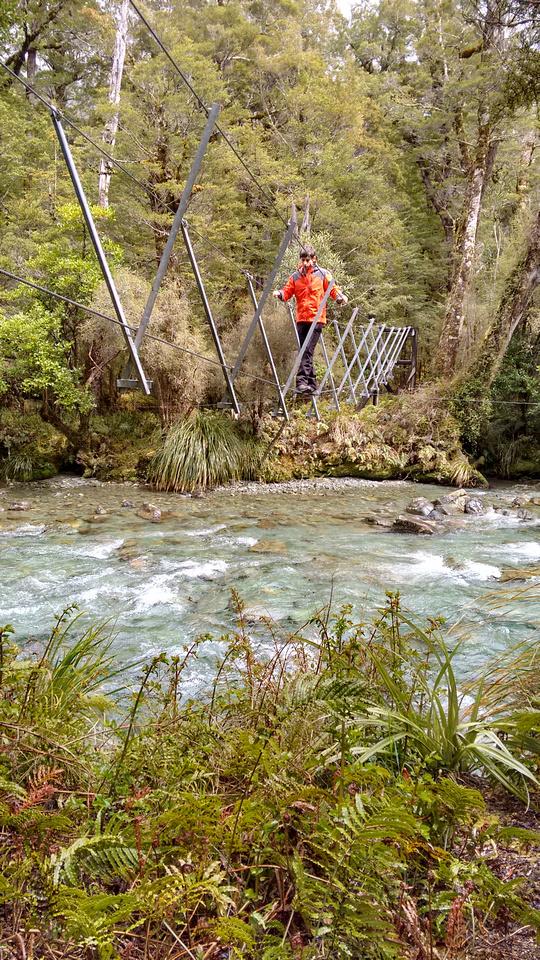 tom-NZ-fiordland-walk_wire