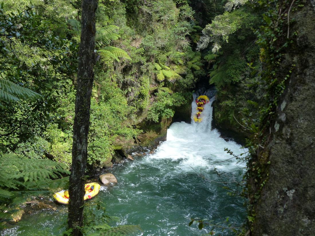 nat-NZ-rotorua-kaituna_rapids-tuteas_falls-raft-1